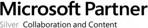 Microsoft partner logotipas