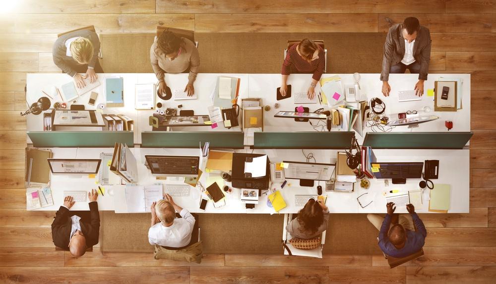 organizacijos valdymas komandoje